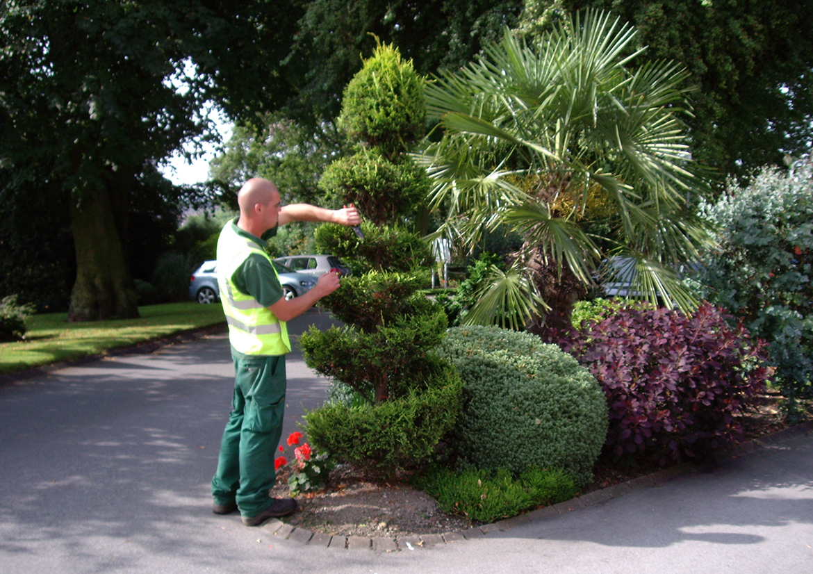Commercial Grounds Management East Yorkshire